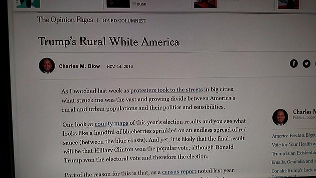 Courtesy, screen grab NY Times' website.